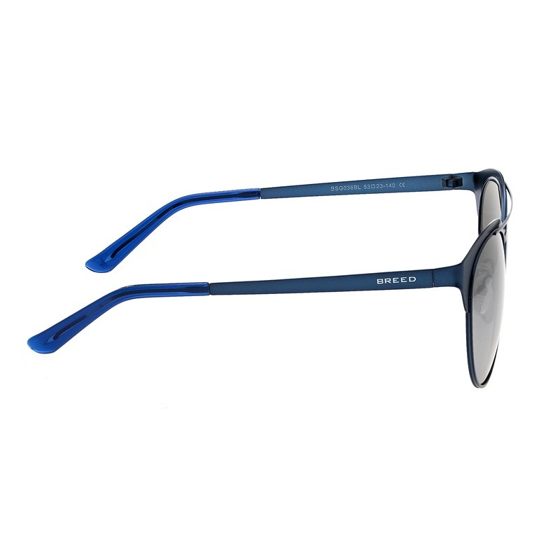 Breed Phoenix Titanium Polarized Sunglasses - Blue/Silver BSG036BL